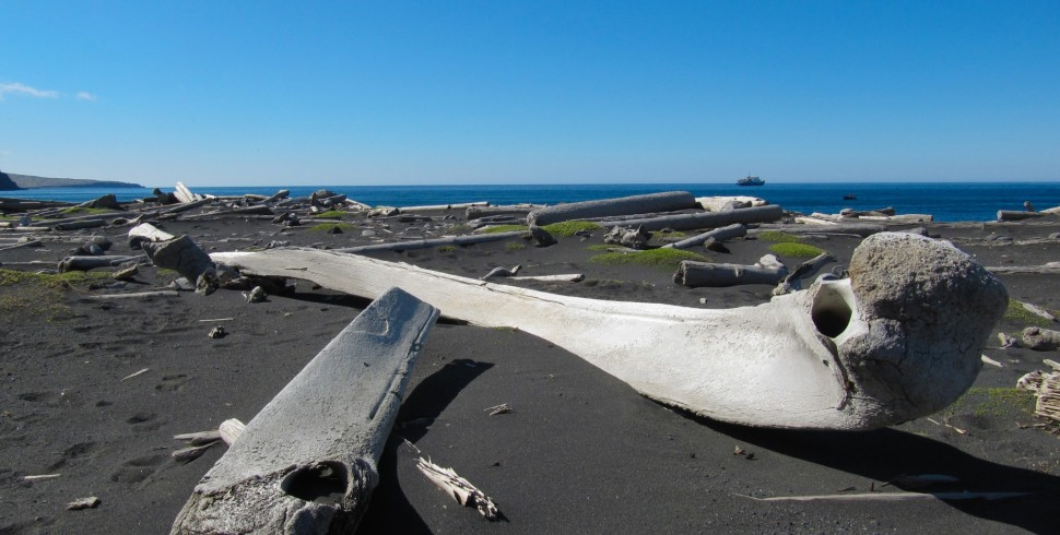 Jan Mayen, sperduta isola artica